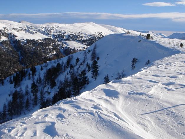 Foto: Manfred Karl / Ski Tour / Über die Steffeialm auf den Wirtsnock / Links über den Kamm gewinnt man den Gipfel / 29.01.2009 19:39:13
