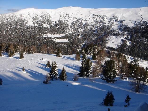 Foto: Manfred Karl / Ski Tour / Über die Steffeialm auf den Wirtsnock / Hühnerleitennock / 29.01.2009 19:38:25