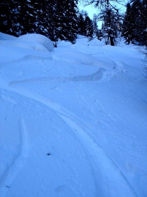 Foto: Manfred Karl / Ski Tour / Über die Steffeialm auf den Wirtsnock / 29.01.2009 19:36:38