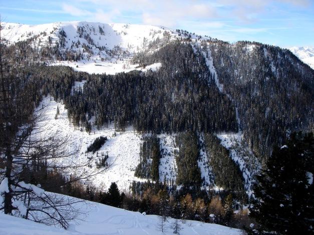Foto: Manfred Karl / Ski Tour / Über die Steffeialm auf den Wirtsnock / Wirtsnock mit Steffeialm / 29.01.2009 19:36:03