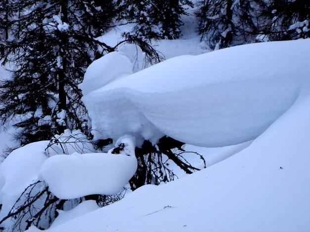 Foto: Manfred Karl / Ski Tour / Mühlhauserhöhe, 2216 m / 29.01.2009 20:20:15