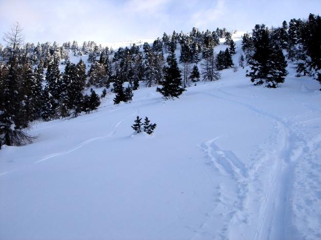 Foto: Manfred Karl / Ski Tour / Mühlhauserhöhe, 2216 m / Insgesamt ein recht schönes Schigelände / 29.01.2009 20:19:43