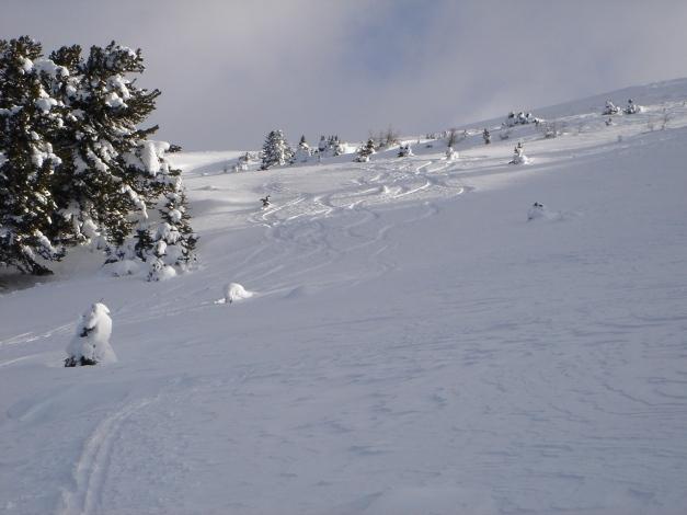 Foto: Manfred Karl / Ski Tour / Mühlhauserhöhe, 2216 m / 29.01.2009 20:17:59