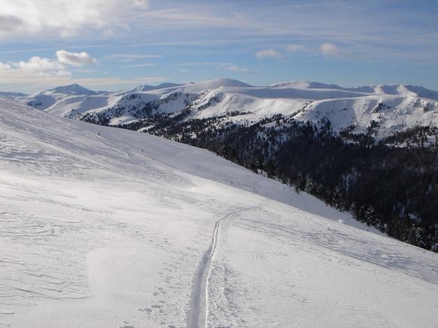 Foto: Manfred Karl / Ski Tour / Mühlhauserhöhe, 2216 m / Über schöne freie Hänge erreicht man den Gipfel / 29.01.2009 20:17:35