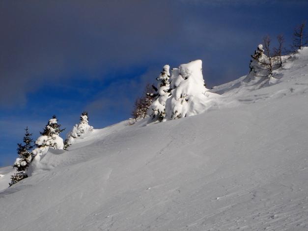 Foto: Manfred Karl / Ski Tour / Mühlhauserhöhe, 2216 m / 29.01.2009 20:17:03