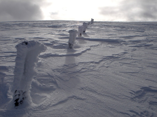 Foto: Manfred Karl / Ski Tour / Mühlhauserhöhe, 2216 m / Ein guter Wegweiser zum höchsten Punkt / 29.01.2009 20:16:31