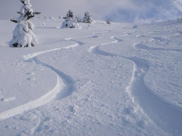 Foto: Manfred Karl / Ski Tour / Mühlhauserhöhe, 2216 m / So passt´s! / 29.01.2009 20:13:37