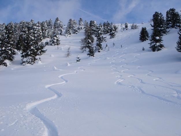 Foto: Manfred Karl / Ski Tour / Mühlhauserhöhe, 2216 m / Traumhänge im oberen Teil / 29.01.2009 20:13:10