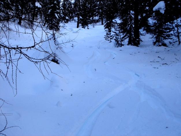 Foto: Manfred Karl / Ski Tour / Mühlhauserhöhe, 2216 m / 29.01.2009 20:12:46