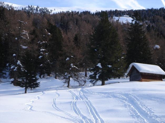 Foto: Manfred Karl / Ski Tour / Mühlhauserhöhe, 2216 m / Bei der Unteren Seifteralm / 29.01.2009 20:12:04