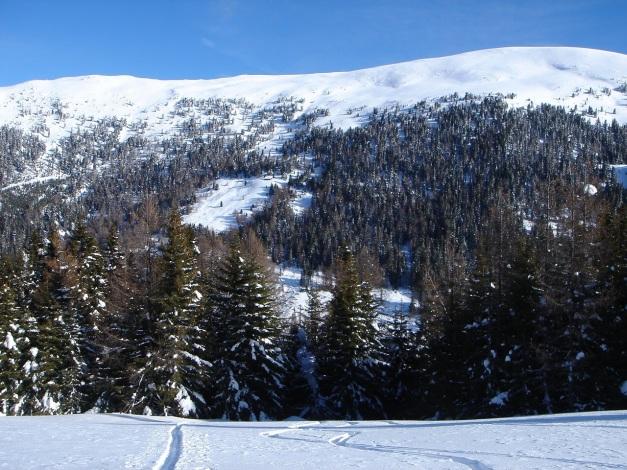 Foto: Manfred Karl / Ski Tour / Mühlhauserhöhe, 2216 m / Mühlhauser Höhe / 29.01.2009 20:11:33