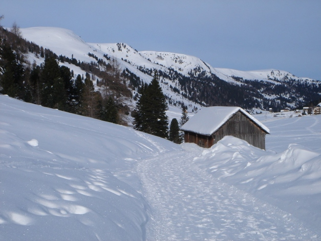 Foto: Manfred Karl / Ski Tour / Rosaninhöhe, 2280 m / Schönfeld / 29.01.2009 20:50:24