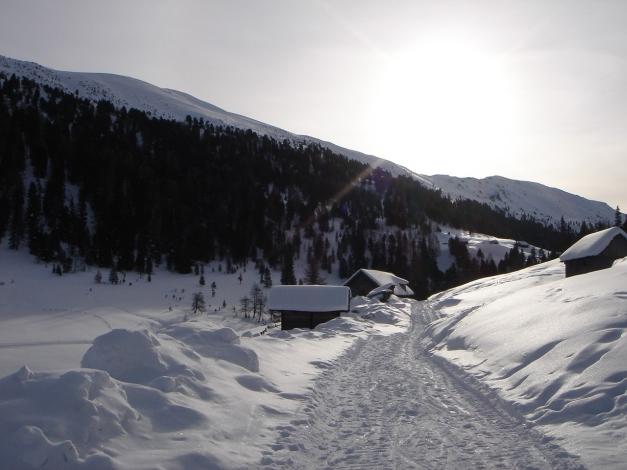 Foto: Manfred Karl / Ski Tour / Rosaninhöhe, 2280 m / Bei der Eßlalm, links ist die Rosaninhöhe zu sehen / 29.01.2009 20:49:51