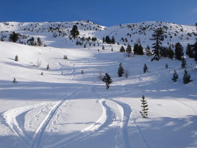 Foto: Manfred Karl / Ski Tour / Rosaninhöhe, 2280 m / Einladende Mulden und Hänge / 29.01.2009 20:46:58