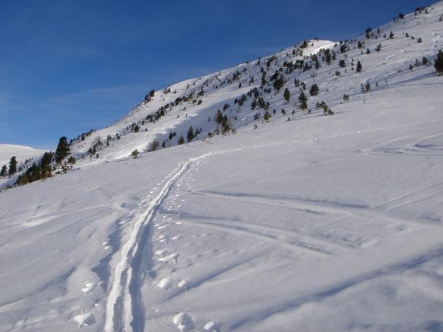 Foto: Manfred Karl / Ski Tour / Rosaninhöhe, 2280 m / Man könnte auch wesentlich weiter links drüben ansteigen in den sichtbaren Sattel und von dort auf den Gipfel gelangen. / 29.01.2009 20:46:18