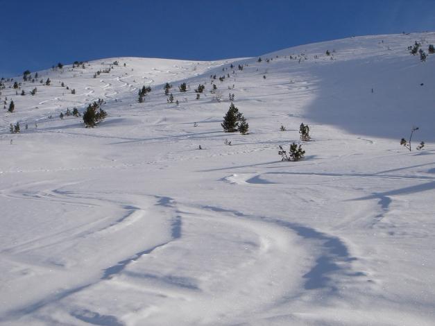 Foto: Manfred Karl / Ski Tour / Rosaninhöhe, 2280 m / 29.01.2009 20:45:12