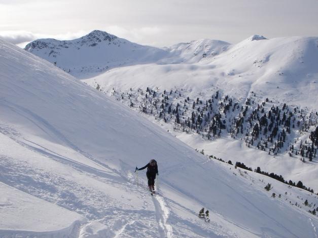 Foto: Manfred Karl / Ski Tour / Rosaninhöhe, 2280 m / Blick zum Gr. Königstuhl / 29.01.2009 20:43:59