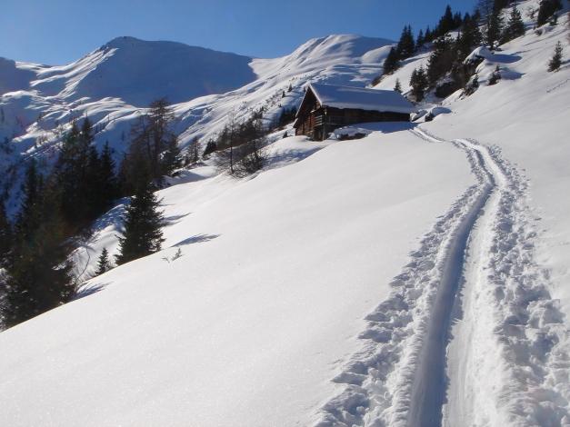 Foto: Manfred Karl / Ski Tour / Drei Gipfel im ruhigeren Eck der Toferer Alm / Tofernalm mit Throneck und Finsterkopf / 29.01.2009 21:38:29