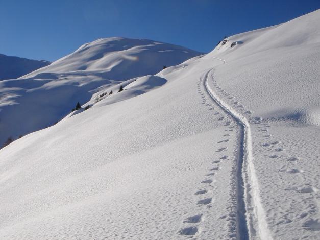 Foto: Manfred Karl / Ski Tour / Drei Gipfel im ruhigeren Eck der Toferer Alm / Am Weg zur Tofernscharte / 29.01.2009 21:37:31