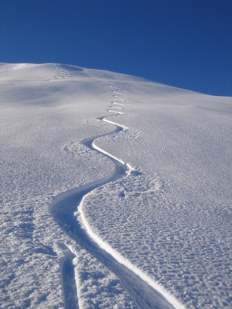 Foto: Manfred Karl / Ski Tour / Drei Gipfel im ruhigeren Eck der Toferer Alm / Traumhänge vom Finsterkopf ins Toferntal / 29.01.2009 21:35:58