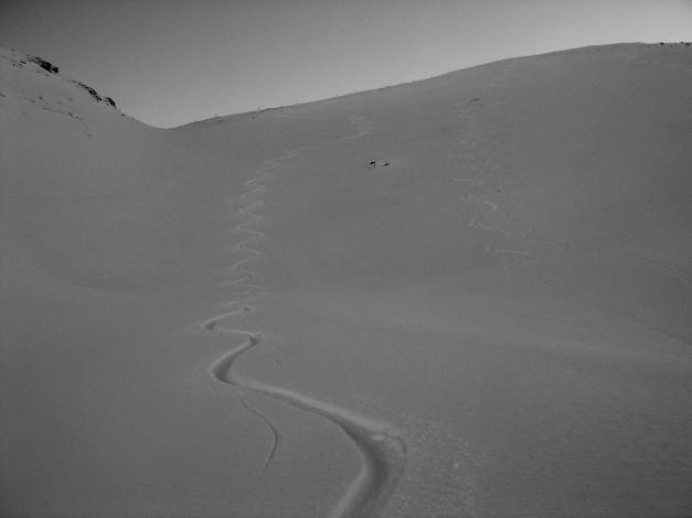 Foto: Manfred Karl / Ski Tour / Drei Gipfel im ruhigeren Eck der Toferer Alm / 29.01.2009 21:27:02