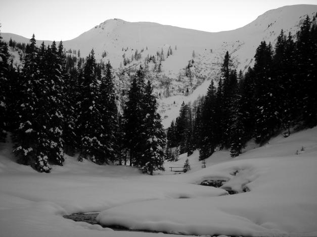 Foto: Manfred Karl / Ski Tour / Drei Gipfel im ruhigeren Eck der Toferer Alm / Throneck und Finsterkopf von der Harbachalm / 29.01.2009 21:26:44