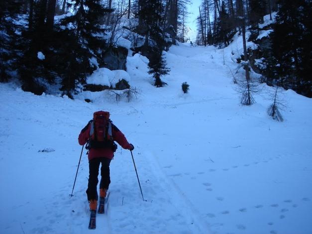 Foto: Manfred Karl / Ski Tour / Seemannwand, 2822 m / Im unteren Teil nach dem steilen Waldstück / 29.01.2009 22:19:51