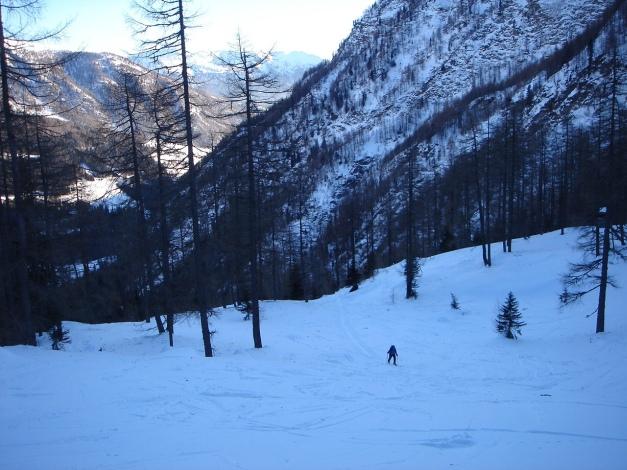 Foto: Manfred Karl / Ski Tour / Seemannwand, 2822 m / Lockerer Wald unterhalb der Lasörnhütte / 29.01.2009 22:19:11