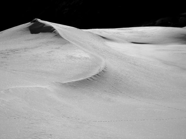 Foto: Manfred Karl / Ski Tour / Seemannwand, 2822 m / 29.01.2009 22:12:01