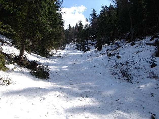 Foto: Manfred Karl / Ski Tour / DER Strichkogelklassiker über das Sulzkar und das Tiefenkar / Im unteren Teil ist das Gelände etwas durchwachsen / 29.01.2009 22:43:31