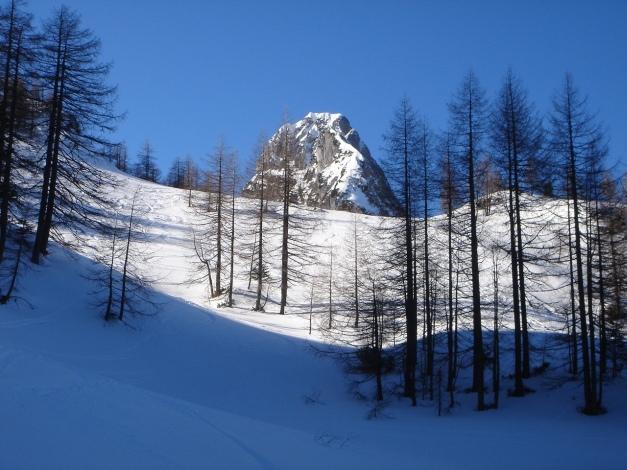 Foto: Manfred Karl / Ski Tour / Über die Gsengalm auf die Gsenghöhe / Der Große Traunstein lugt über den Lärchenhängen hervor / 30.01.2009 21:58:29