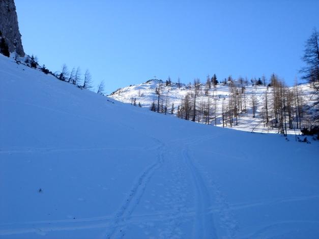 Foto: Manfred Karl / Ski Tour / Über die Gsengalm auf die Gsenghöhe / Der Gipfel ist in Sicht / 30.01.2009 21:57:37