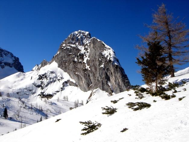 Foto: Manfred Karl / Ski Tour / Über die Gsengalm auf die Gsenghöhe / Großer Traunstein / 30.01.2009 21:57:06