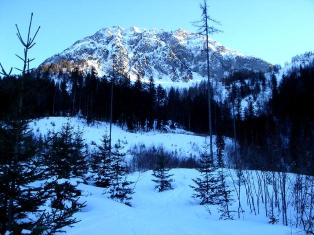 Foto: Manfred Karl / Ski Tour / Über die Gsengalm auf die Gsenghöhe / 30.01.2009 21:53:43