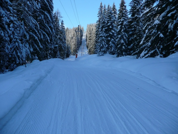 Foto: Manfred Karl / Ski Tour / Leckriedel, 1846 m / Die Abfahrtsschneise (im untersten Teil eine Rodelbahn) - Bei gutem Pulverschnee +++ / 30.01.2009 22:30:31