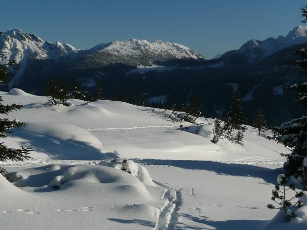 Foto: Manfred Karl / Ski Tour / Leckriedel, 1846 m / 30.01.2009 22:26:49
