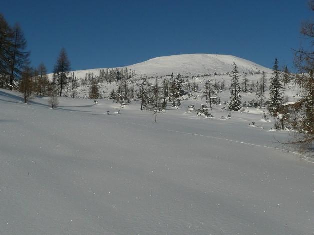 Foto: Manfred Karl / Ski Tour / Leckriedel, 1846 m / 30.01.2009 22:26:34