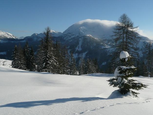 Foto: Manfred Karl / Ski Tour / Leckriedel, 1846 m / 30.01.2009 22:26:21