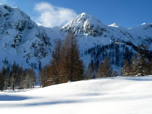 Foto: Manfred Karl / Ski Tour / Leckriedel, 1846 m / Kl. - Gr. Bärnstaffl / 30.01.2009 22:25:59