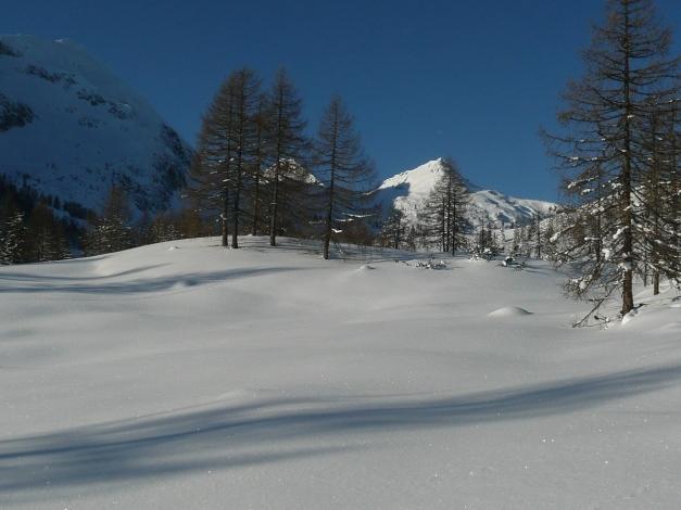 Foto: Manfred Karl / Ski Tour / Leckriedel, 1846 m / 30.01.2009 22:25:30