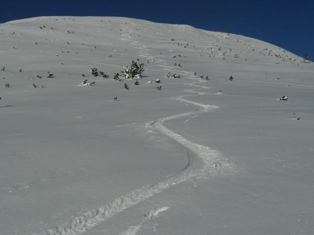 Foto: Manfred Karl / Ski Tour / Leckriedel, 1846 m / Herrlicher Pulverschnee am Gipfelhang / 30.01.2009 22:20:45