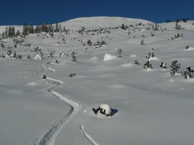 Foto: Manfred Karl / Ski Tour / Leckriedel, 1846 m / 30.01.2009 22:19:48