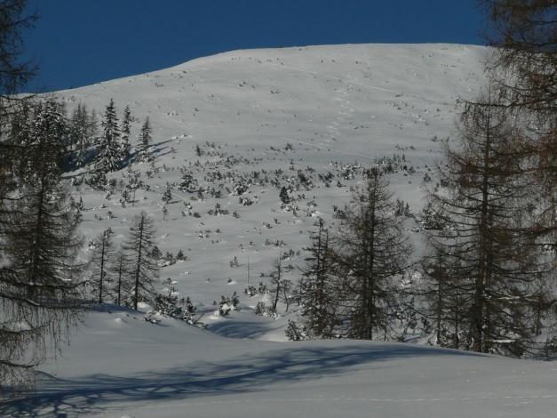 Foto: Manfred Karl / Ski Tour / Leckriedel, 1846 m / Gipfelhang / 30.01.2009 22:19:35