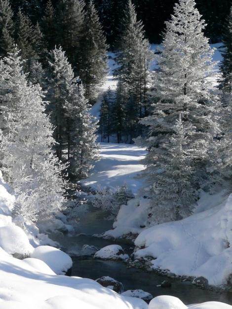 Foto: Manfred Karl / Ski Tour / Leckriedel, 1846 m / 30.01.2009 22:18:00