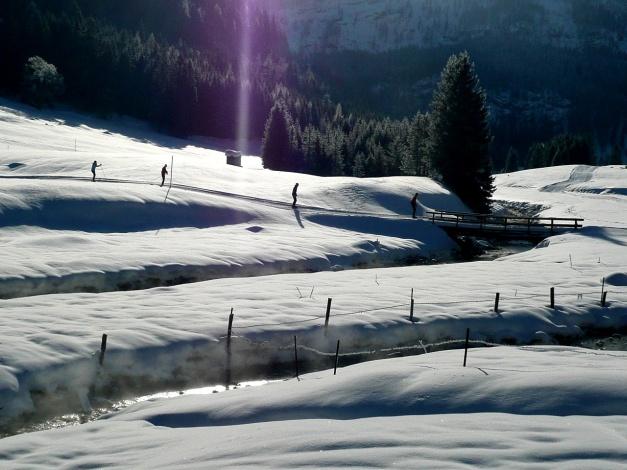 Foto: Manfred Karl / Ski Tour / Leckriedel, 1846 m / Im Bereich der Gnadenalm gibt es auch eine schöne und recht beliebte Loipe / 30.01.2009 22:17:45