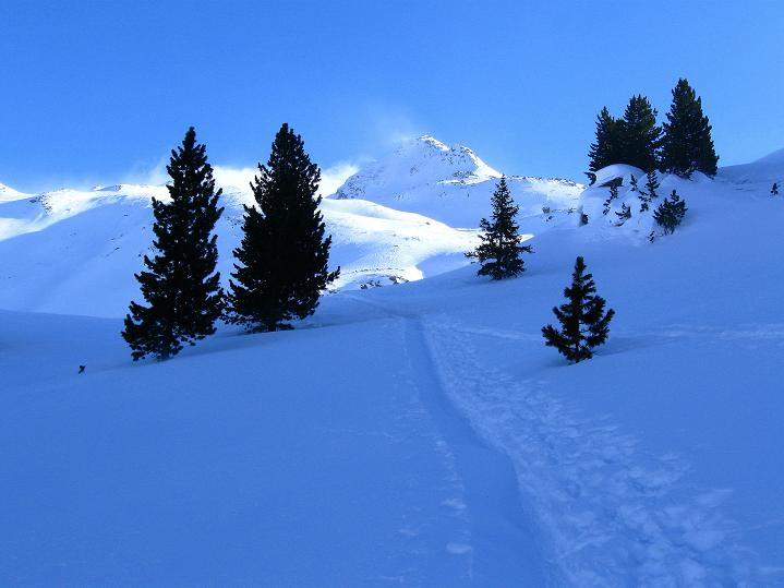 Foto: Andreas Koller / Ski Tour / Impressionen am Flüelapass (2606 m) / 09.02.2009 00:59:55