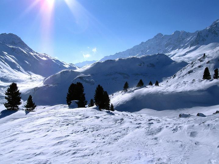 Foto: Andreas Koller / Ski Tour / Impressionen am Flüelapass (2606 m) / Blick Richtung Flüela Pass / 09.02.2009 00:59:49