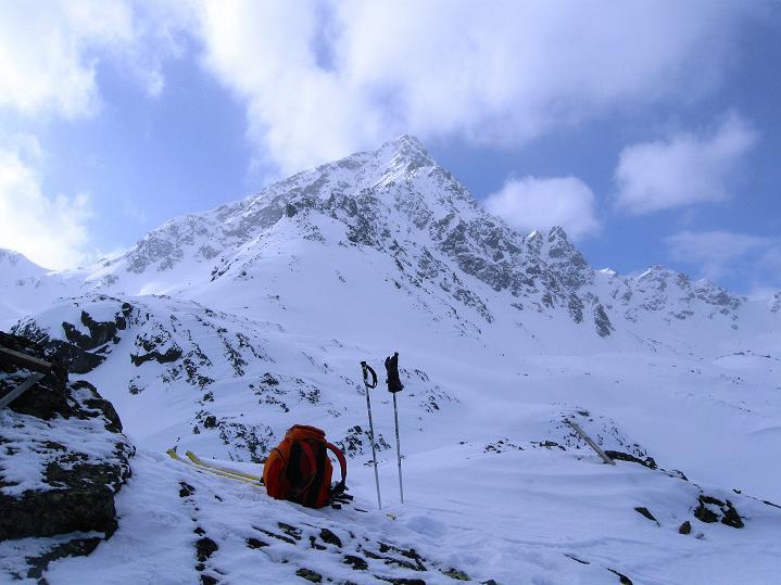 Foto: Andreas Koller / Ski Tour / Impressionen am Flüelapass (2606 m) / Blick auf das Flüela Schwarzhorn (3147 m) / 09.02.2009 00:54:05