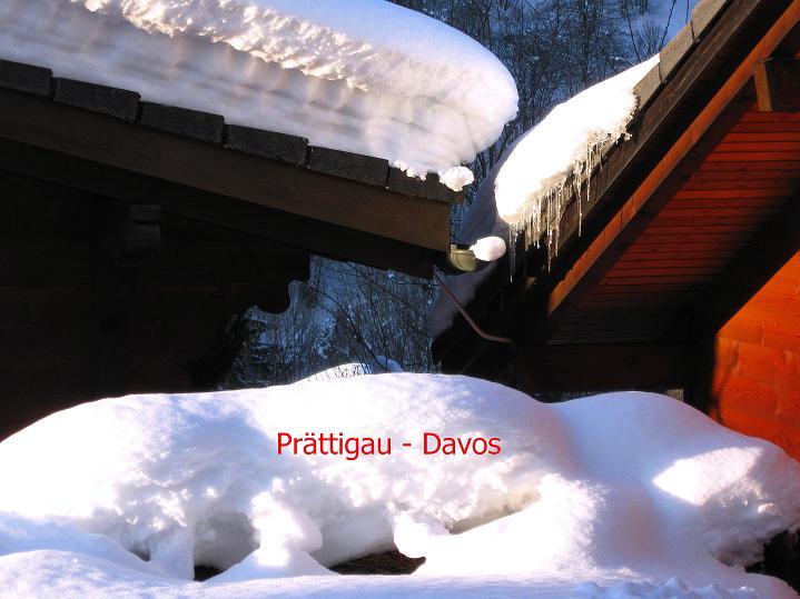 Foto: Andreas Koller / Ski Tour / Von der Madrisa aufs Rätschenhorn (2703m) / 10.02.2009 19:59:50