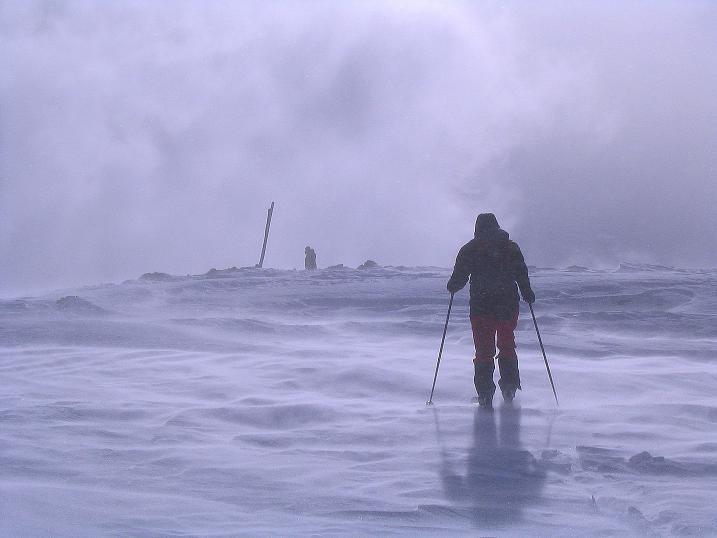 Foto: Andreas Koller / Ski Tour / Von der Madrisa aufs Rätschenhorn (2703m) / Die letzten harten (weil Sturm) Meter zum Gipfel / 10.02.2009 19:44:55